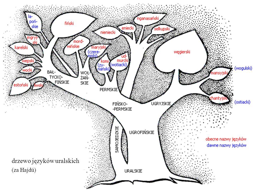 drzewo języków uralskich