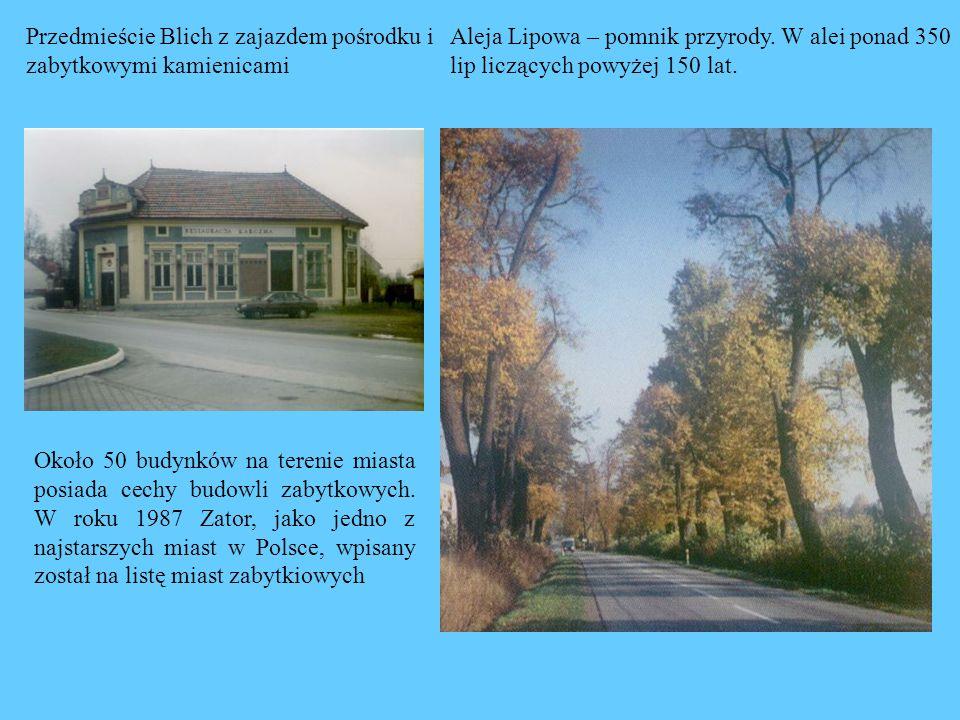 Przedmieście Blich z zajazdem pośrodku i zabytkowymi kamienicami