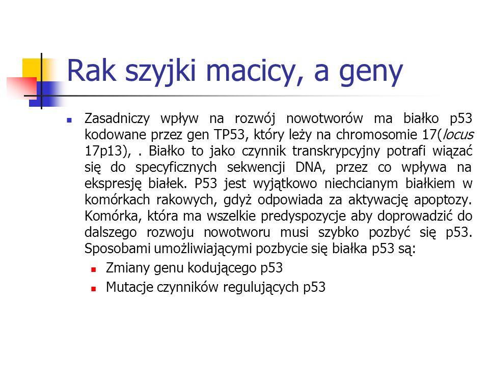 Rak szyjki macicy, a geny