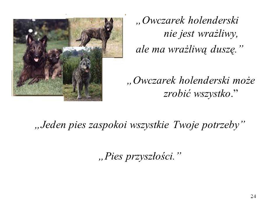 """""""Jeden pies zaspokoi wszystkie Twoje potrzeby"""