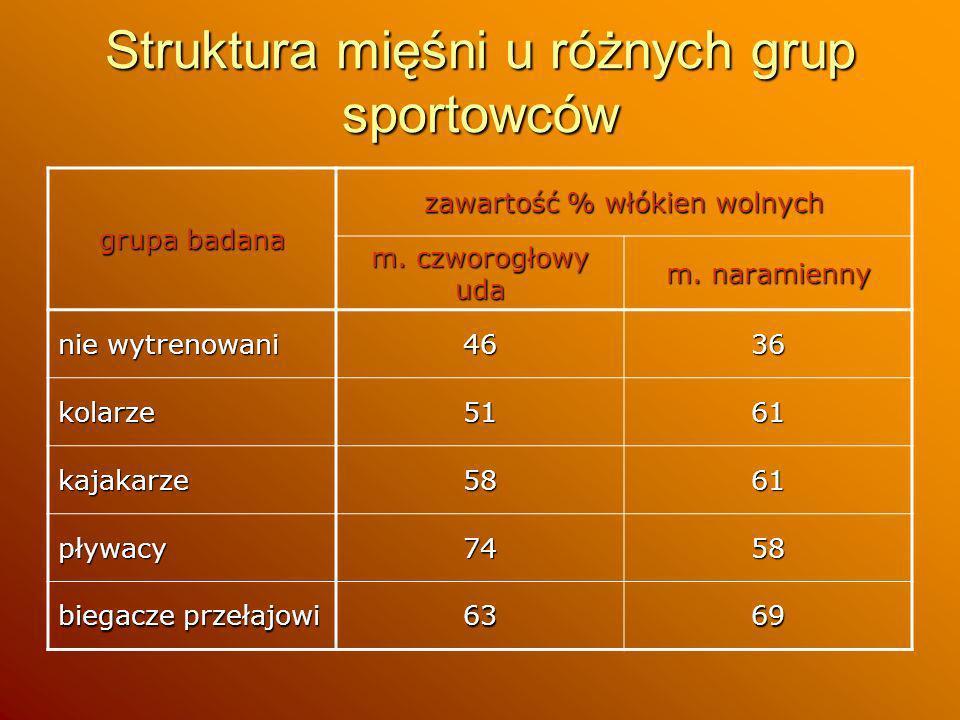 Struktura mięśni u różnych grup sportowców