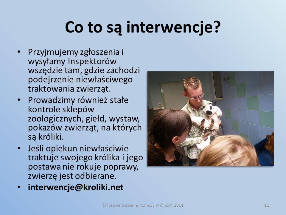 (c) Stowarzyszenie Pomocy Królikom 2011