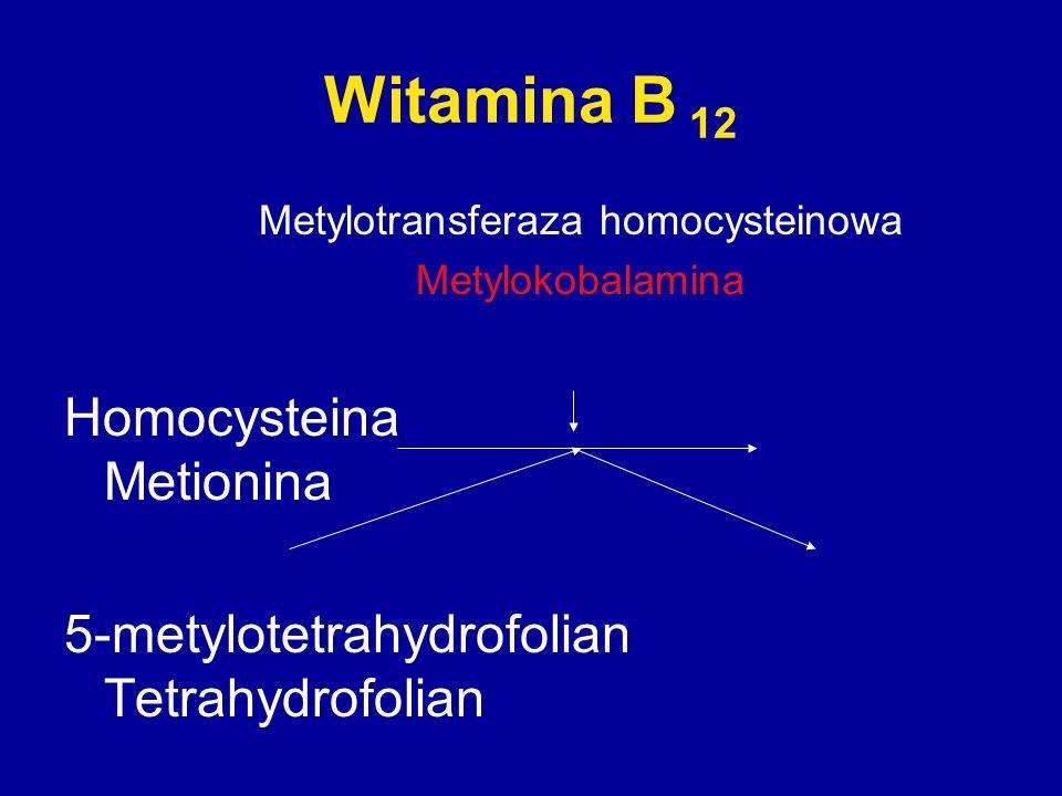 Metylotransferaza homocysteinowa