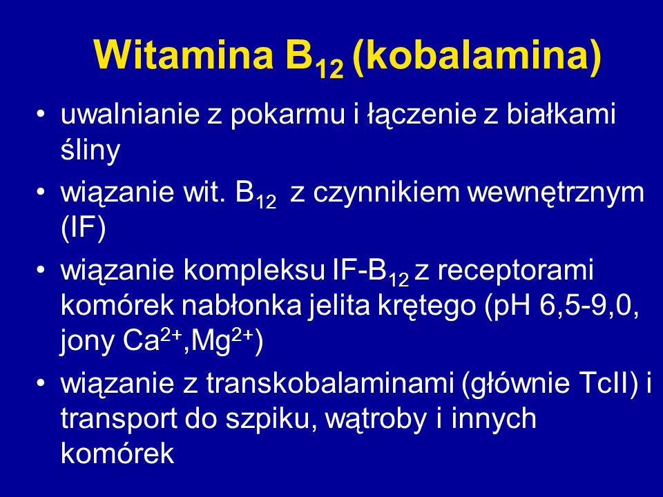 Witamina B12 (kobalamina)