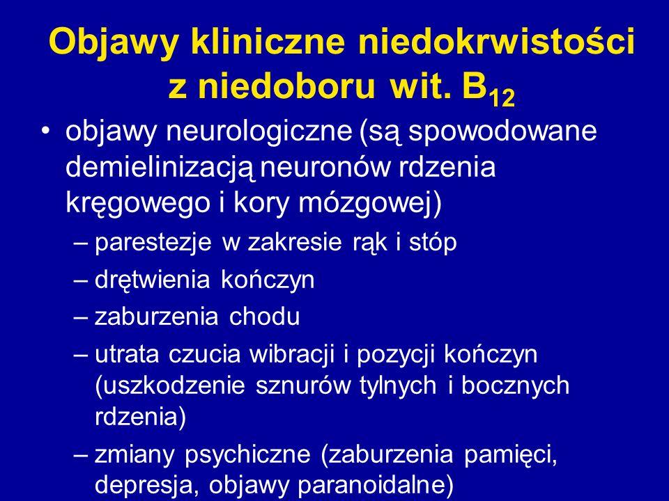Objawy kliniczne niedokrwistości z niedoboru wit. B12