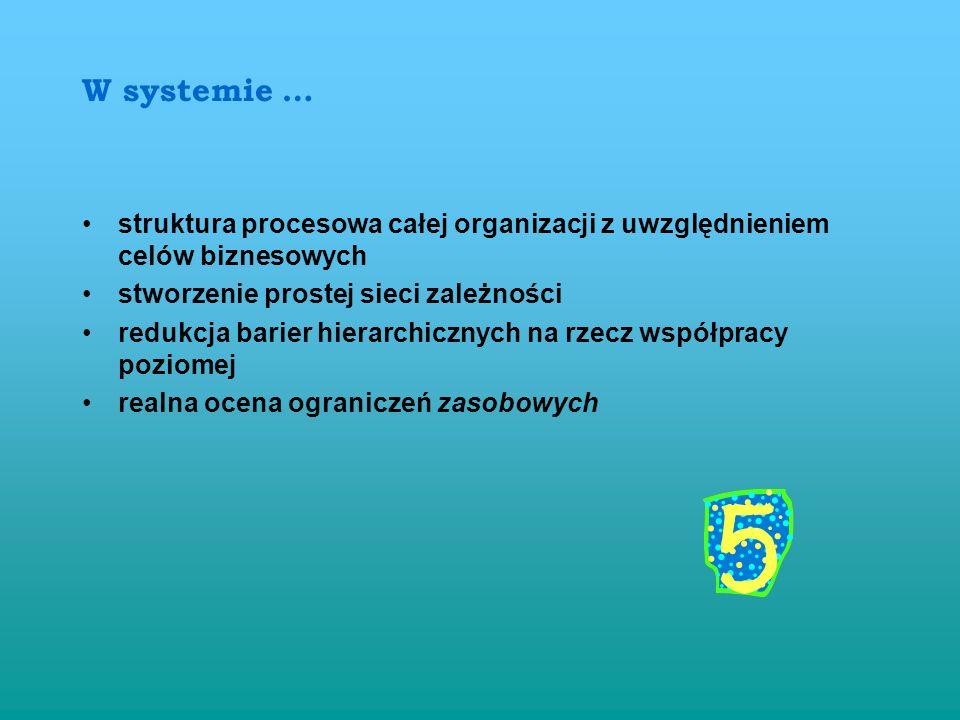 W systemie …struktura procesowa całej organizacji z uwzględnieniem celów biznesowych. stworzenie prostej sieci zależności.