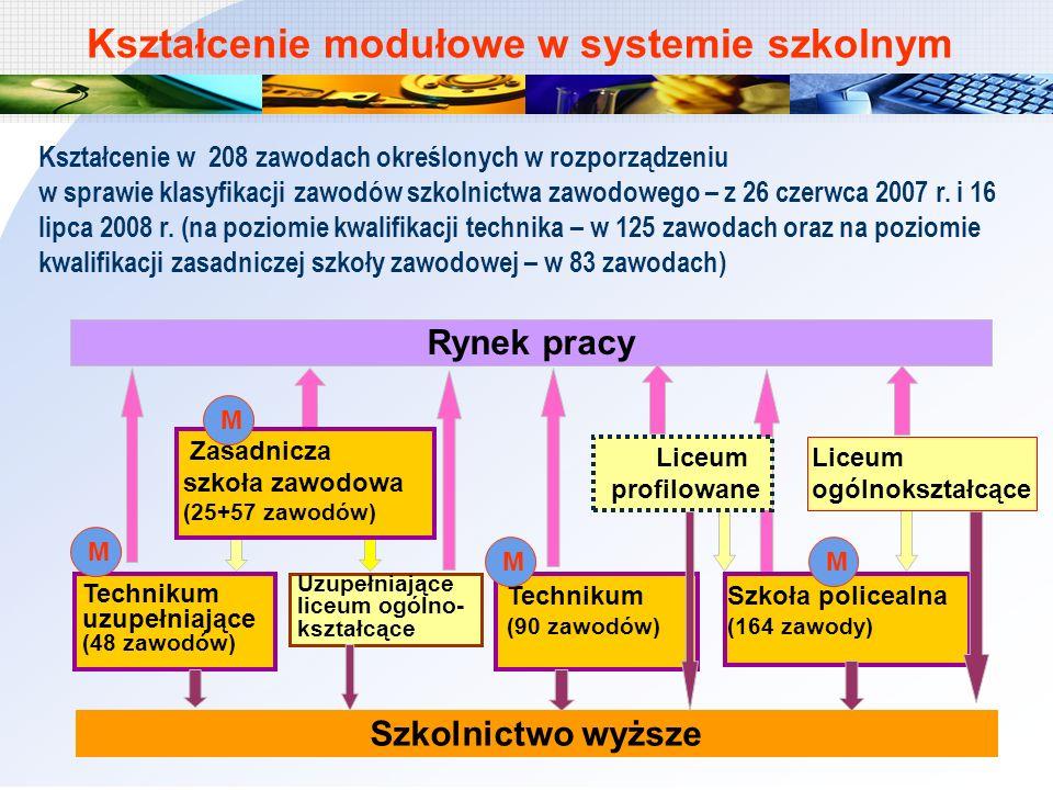Kształcenie modułowe w systemie szkolnym
