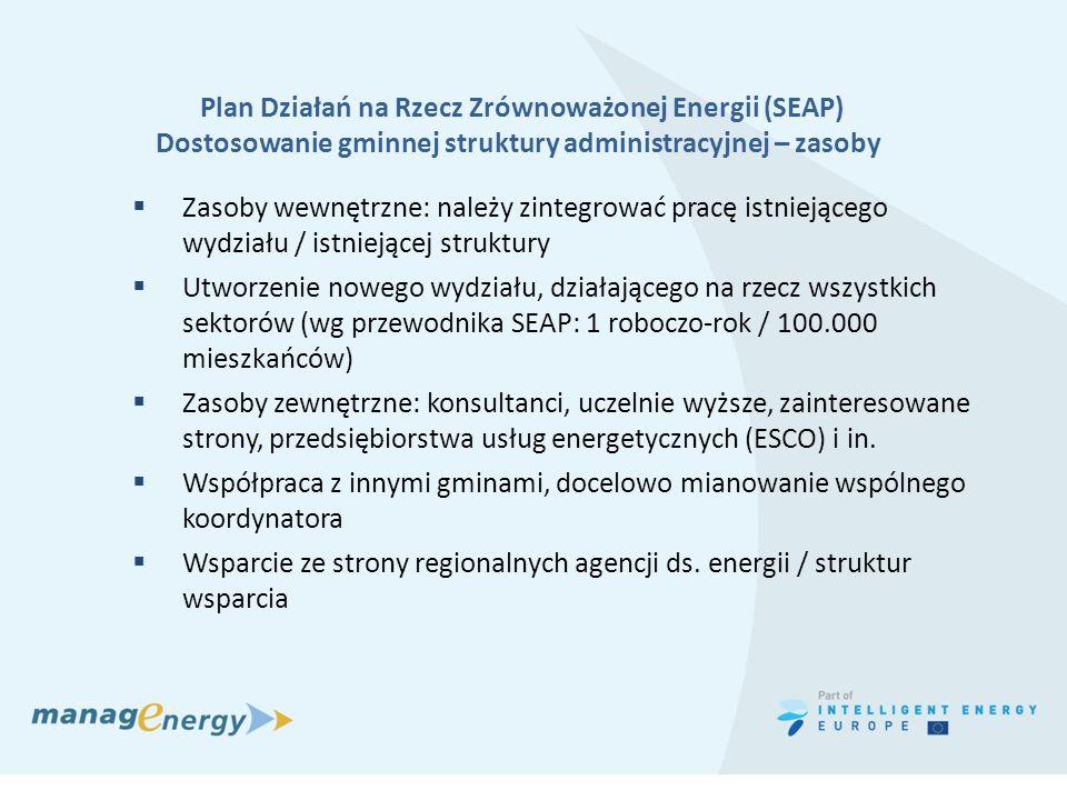 Plan Działań na Rzecz Zrównoważonej Energii (SEAP)