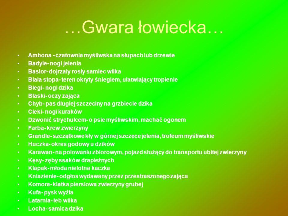 …Gwara łowiecka… Ambona - czatownia myśliwska na słupach lub drzewie