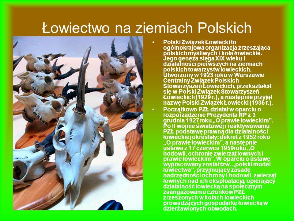 Łowiectwo na ziemiach Polskich