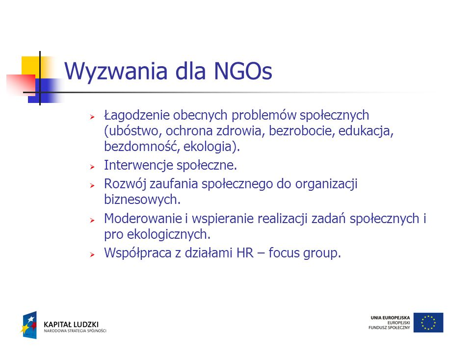 Wyzwania dla NGOs Łagodzenie obecnych problemów społecznych (ubóstwo, ochrona zdrowia, bezrobocie, edukacja, bezdomność, ekologia).