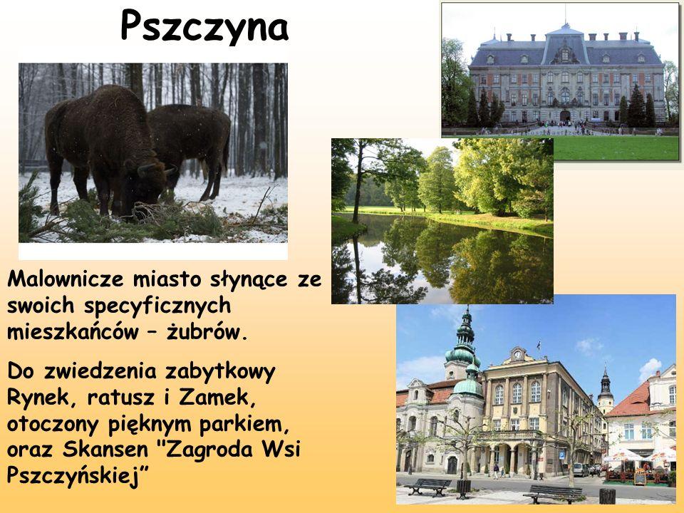 Pszczyna Malownicze miasto słynące ze swoich specyficznych mieszkańców – żubrów.