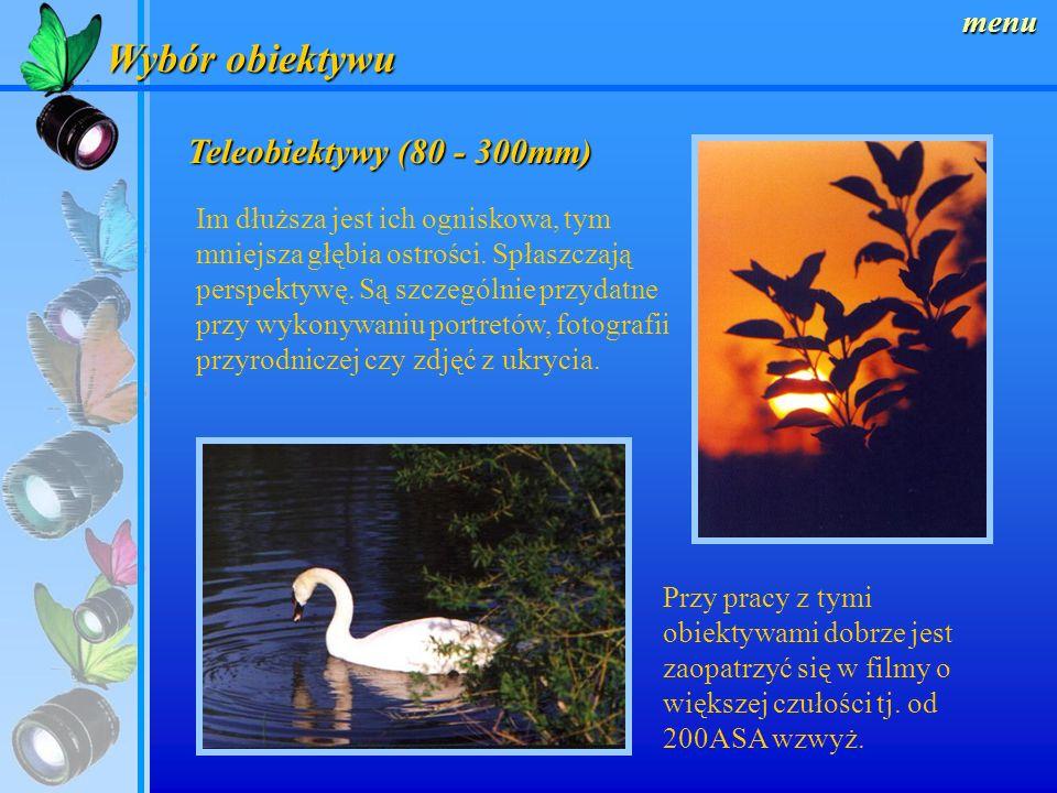 Wybór obiektywu Teleobiektywy (80 - 300mm) menu