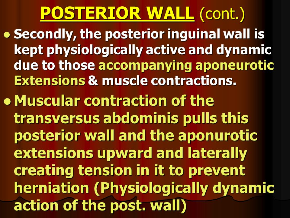POSTERIOR WALL (cont.)