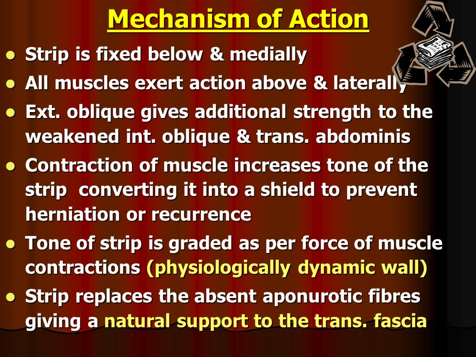 Mechanism of Action Strip is fixed below & medially