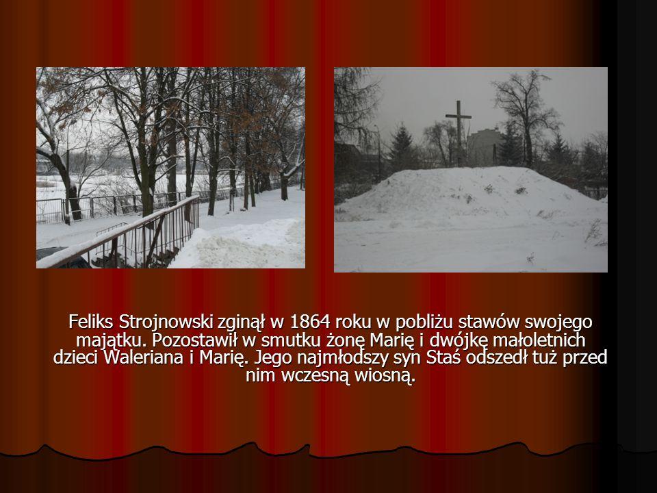 Feliks Strojnowski zginął w 1864 roku w pobliżu stawów swojego majątku