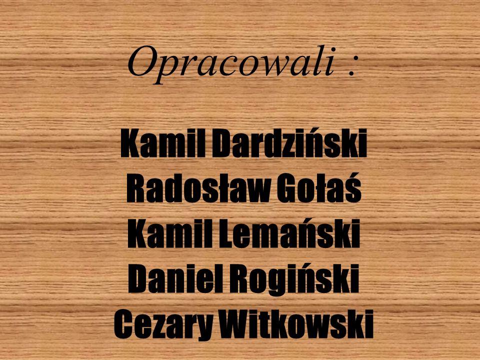 Opracowali : Kamil Dardziński Radosław Gołaś Kamil Lemański
