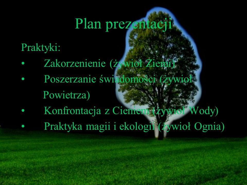 Plan prezentacji Praktyki: Zakorzenienie (żywioł Ziemi)