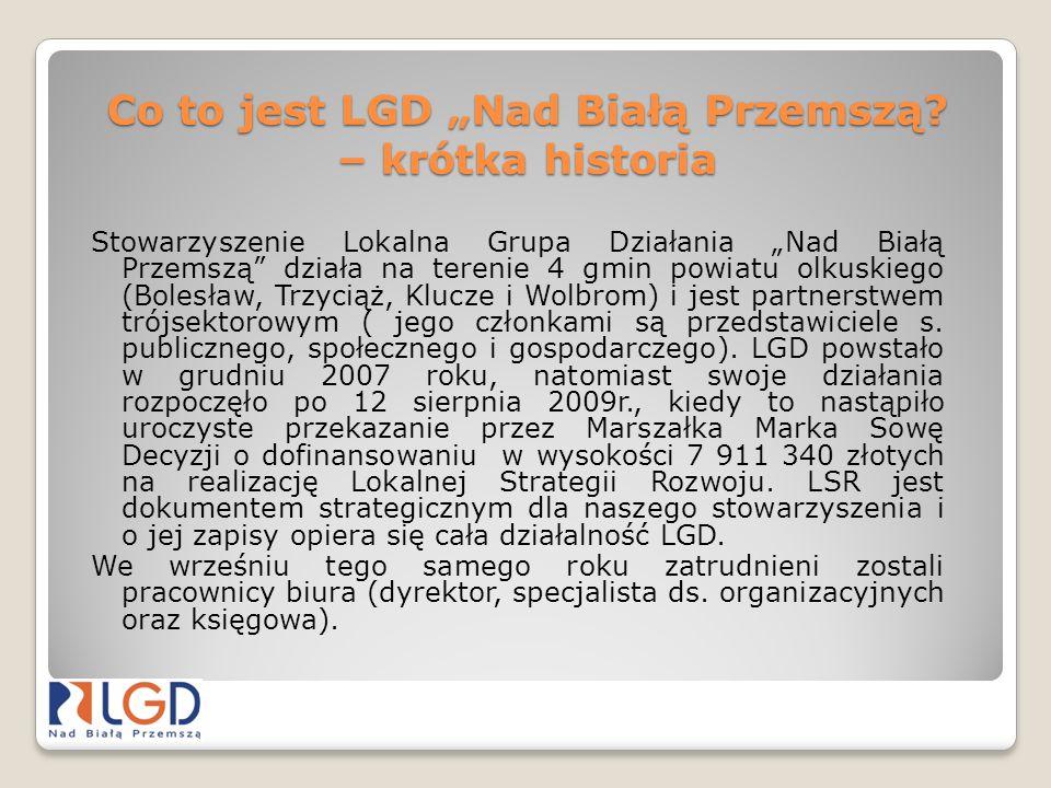"""Co to jest LGD """"Nad Białą Przemszą – krótka historia"""