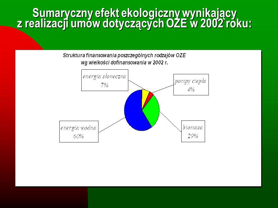 Sumaryczny efekt ekologiczny wynikający z realizacji umów dotyczących OZE w 2002 roku: