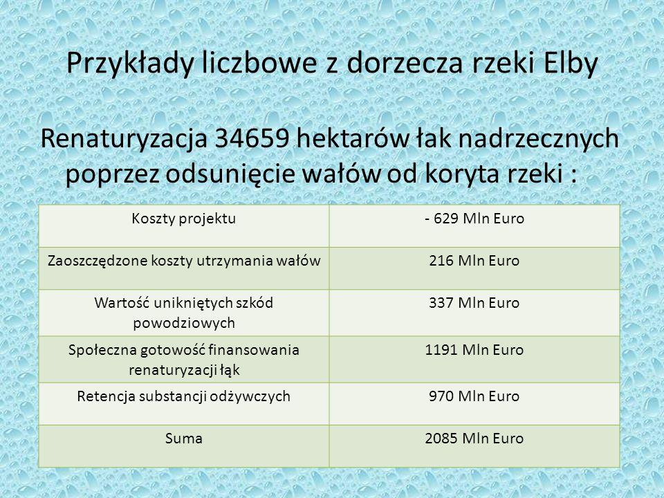 Przykłady liczbowe z dorzecza rzeki Elby