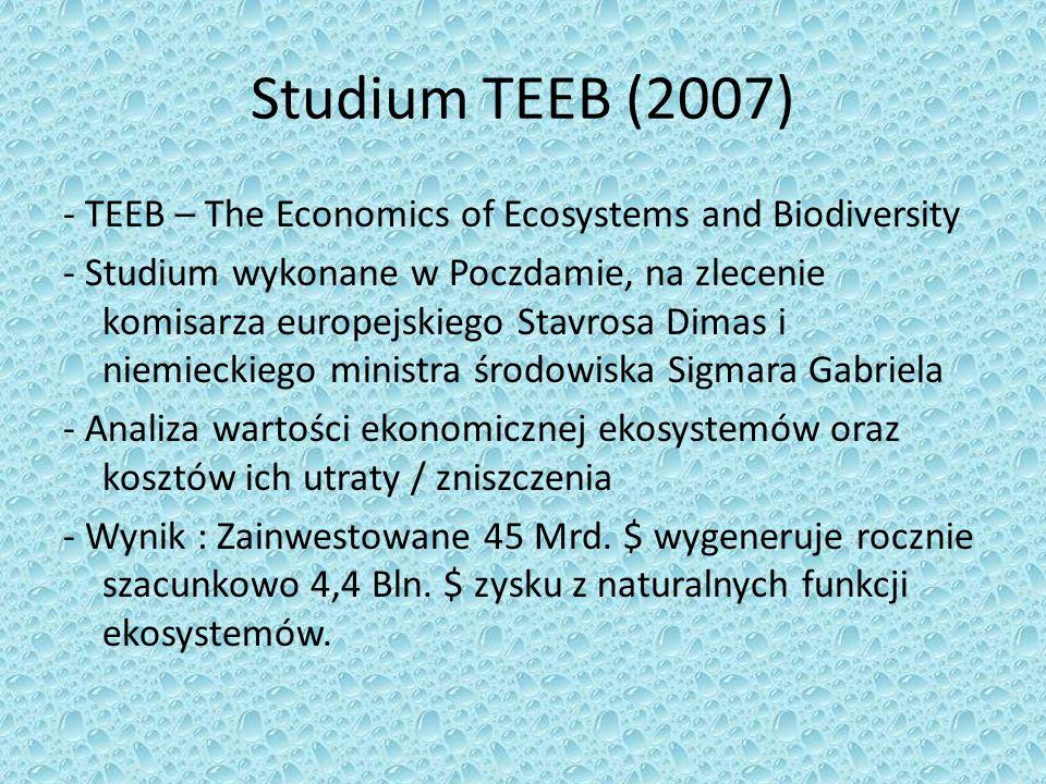 Studium TEEB (2007)