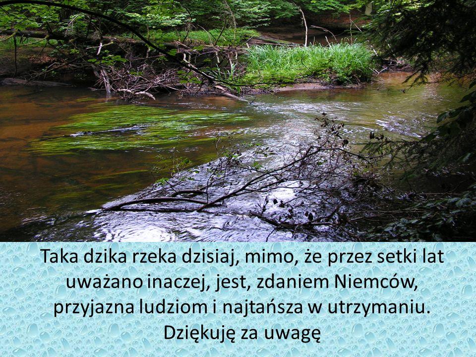 Taka dzika rzeka dzisiaj, mimo, że przez setki lat uważano inaczej, jest, zdaniem Niemców, przyjazna ludziom i najtańsza w utrzymaniu.