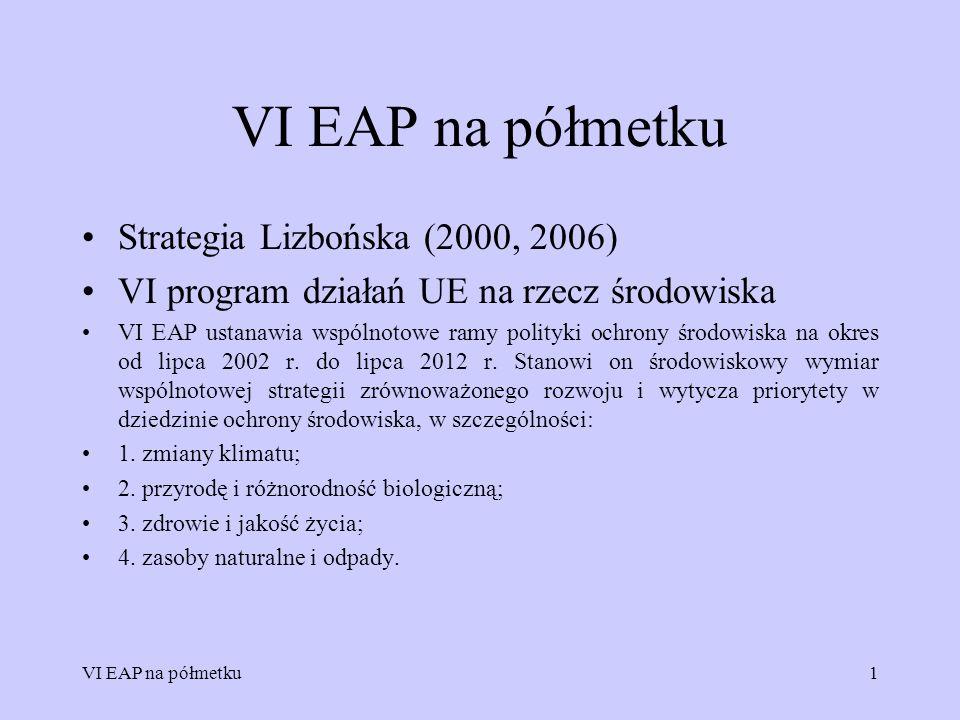 VI EAP na półmetku Strategia Lizbońska (2000, 2006)
