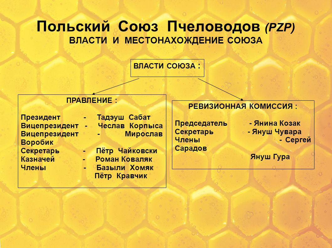 Польский Союз Пчеловодов (PZP) ВЛАСТИ И МЕСТОНАХОЖДЕНИЕ СОЮЗА
