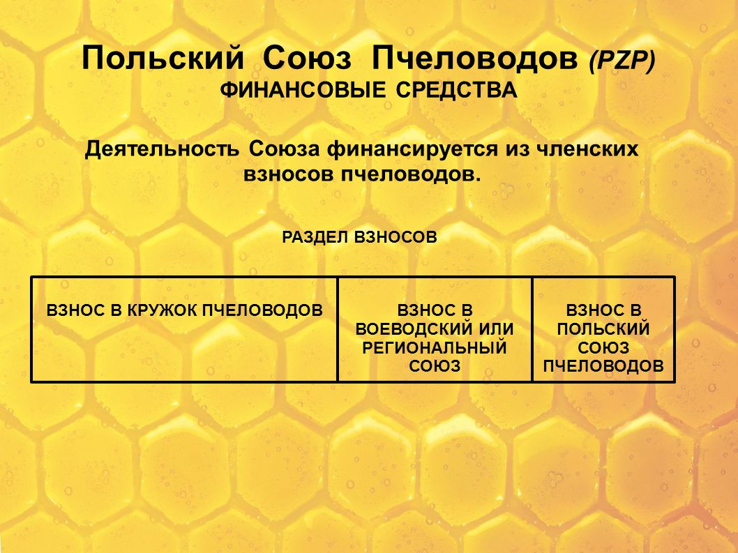 Польский Союз Пчеловодов (PZP) ФИНАНСОВЫЕ СРЕДСТВА