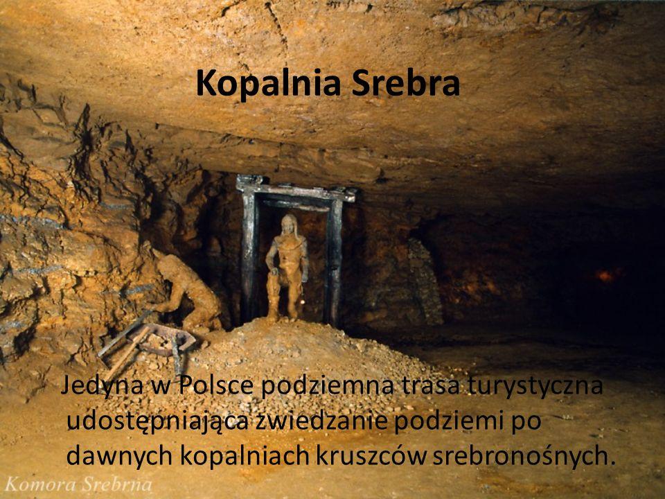 Kopalnia SrebraJedyna w Polsce podziemna trasa turystyczna udostępniająca zwiedzanie podziemi po dawnych kopalniach kruszców srebronośnych.