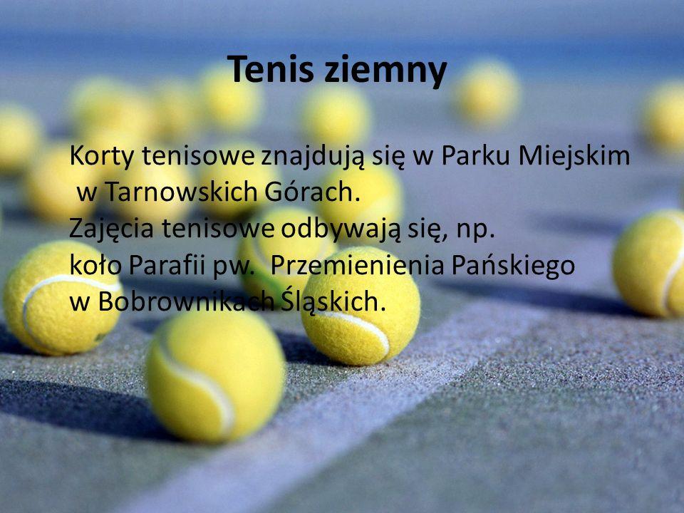 Tenis ziemny Korty tenisowe znajdują się w Parku Miejskim