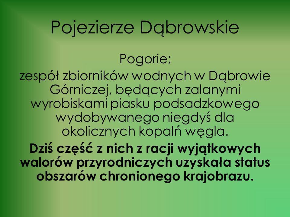 Pojezierze Dąbrowskie