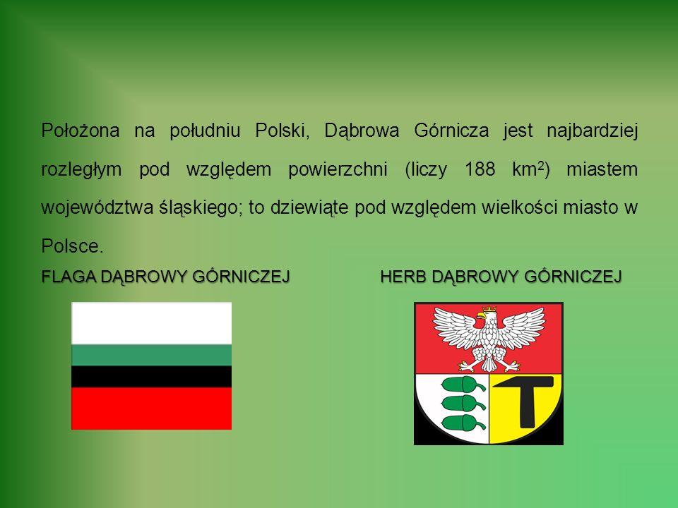 Położona na południu Polski, Dąbrowa Górnicza jest najbardziej rozległym pod względem powierzchni (liczy 188 km2) miastem województwa śląskiego; to dziewiąte pod względem wielkości miasto w Polsce.