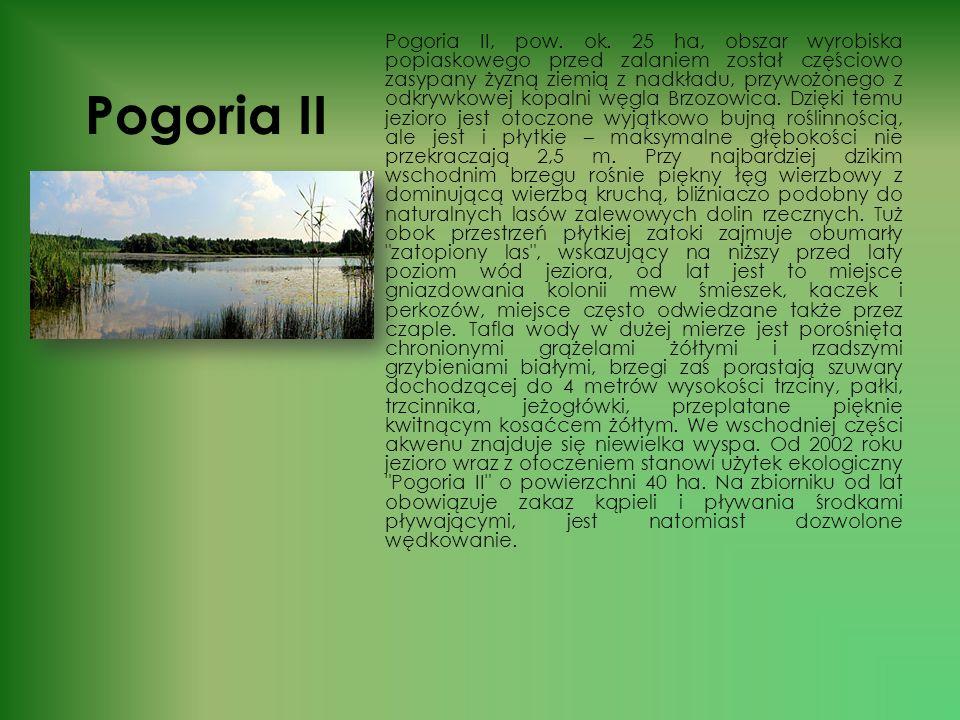 Pogoria II
