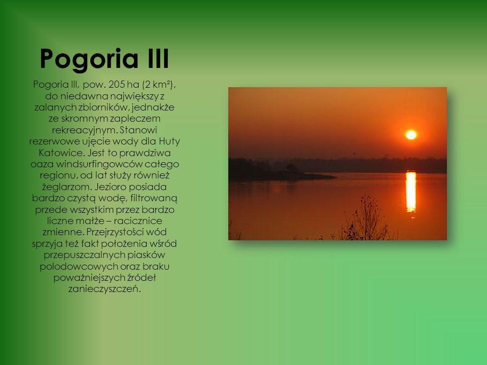 Pogoria III