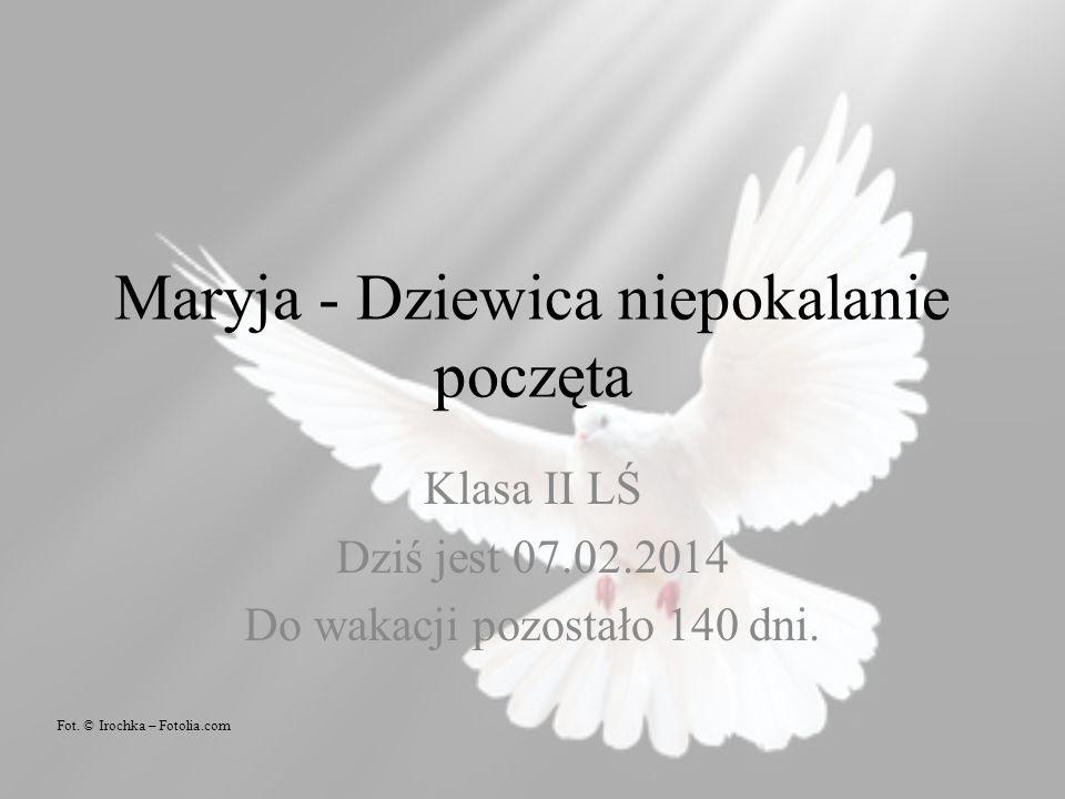 Maryja - Dziewica niepokalanie poczęta