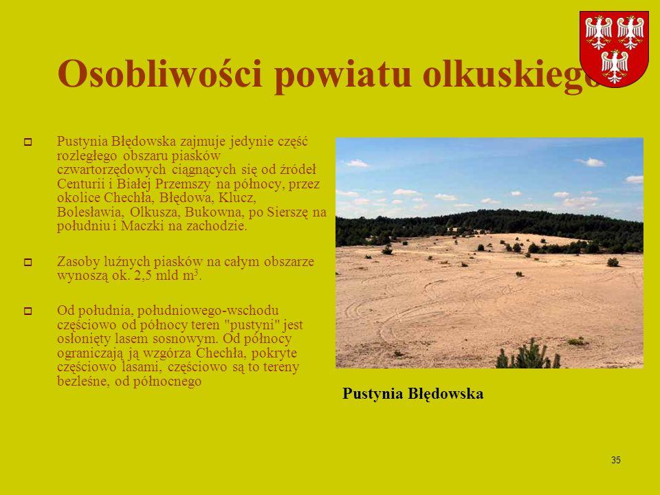 Osobliwości powiatu olkuskiego