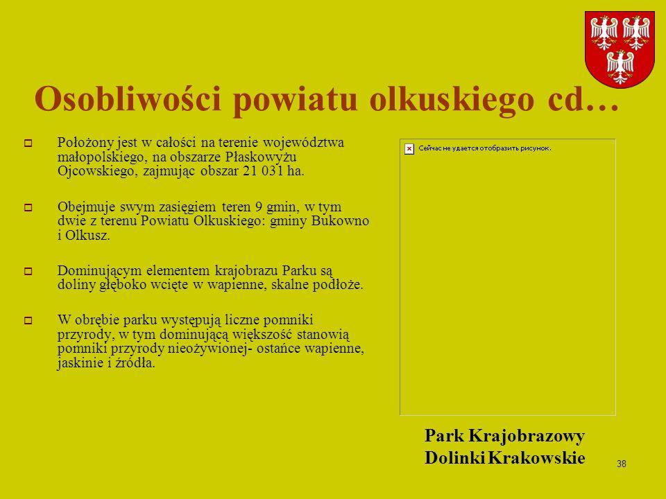 Osobliwości powiatu olkuskiego cd…