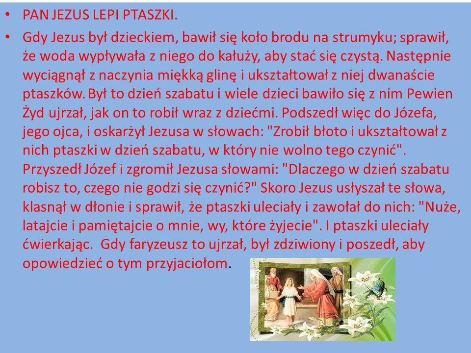 PAN JEZUS LEPI PTASZKI.