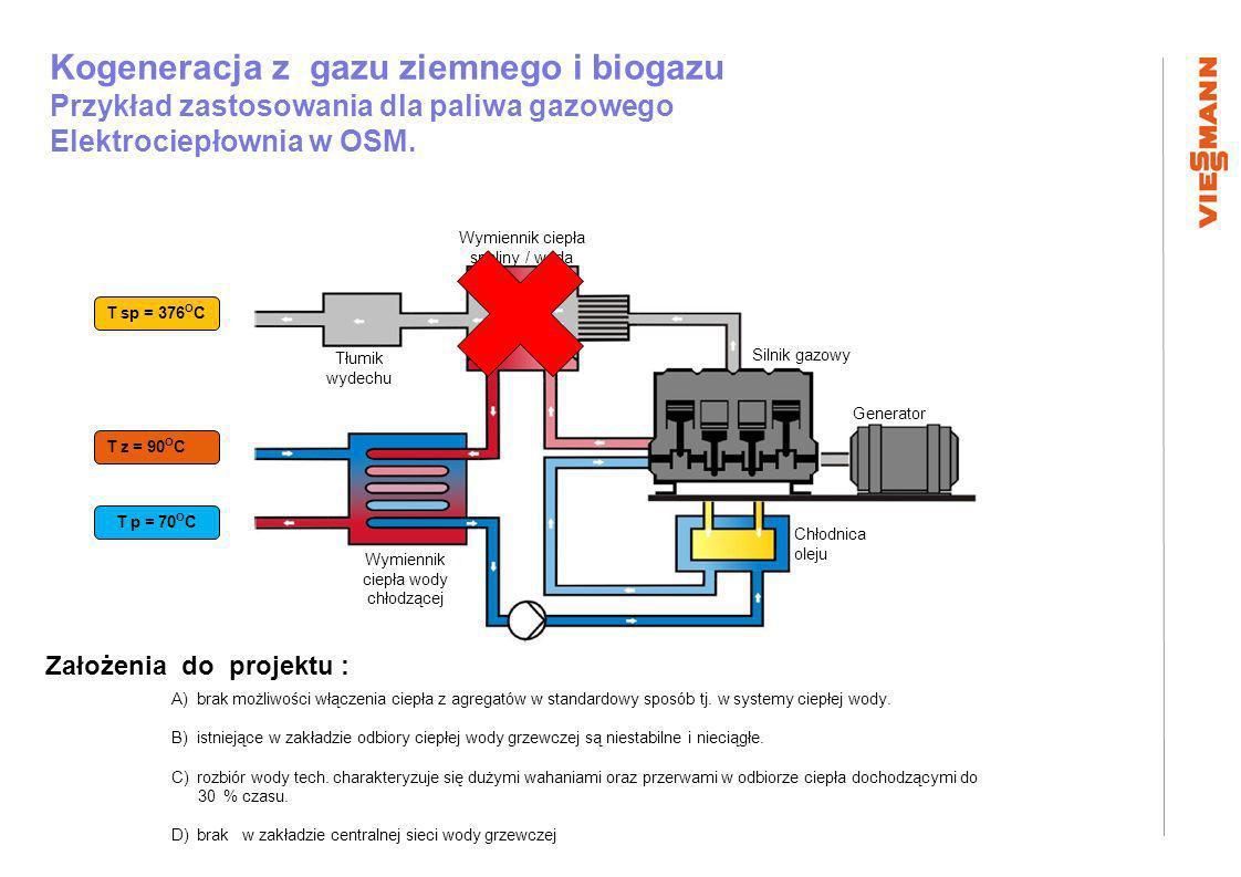 Kogeneracja z gazu ziemnego i biogazu