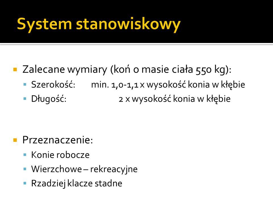 System stanowiskowy Zalecane wymiary (koń o masie ciała 550 kg):