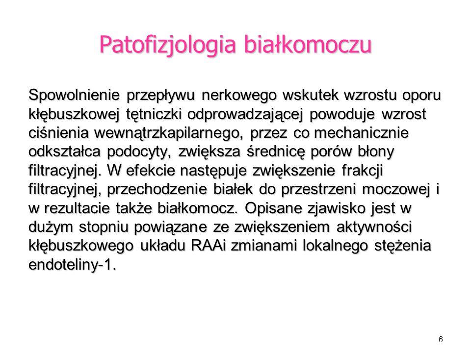 Patofizjologia białkomoczu
