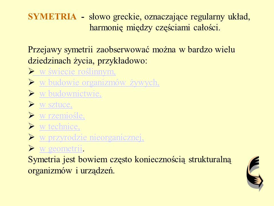 SYMETRIA - słowo greckie, oznaczające regularny układ,