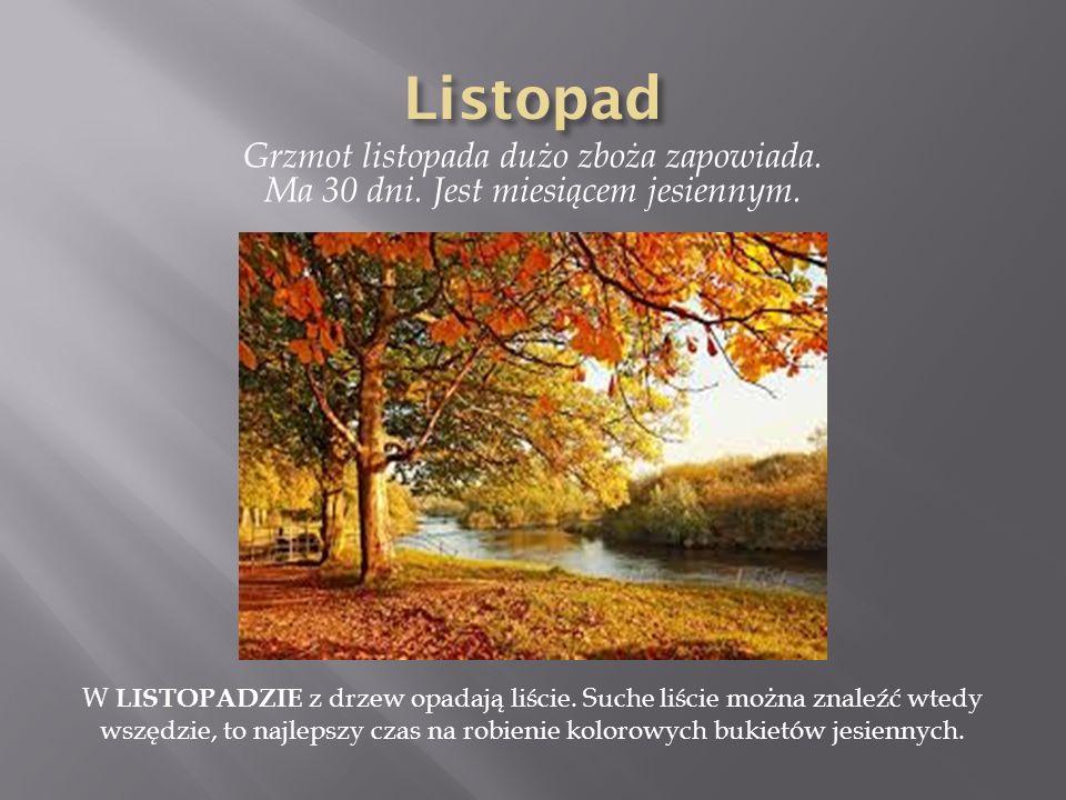 Listopad Grzmot listopada dużo zboża zapowiada. Ma 30 dni. Jest miesiącem jesiennym.