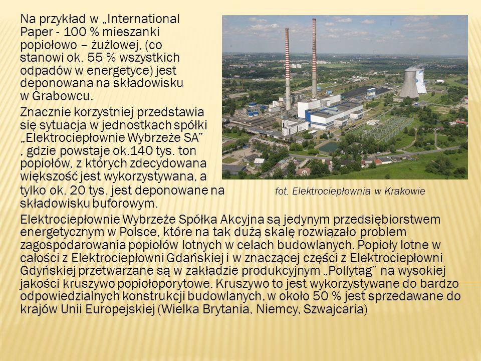 """Na przykład w """"International Paper - 100 % mieszanki popiołowo – żużlowej, (co stanowi ok. 55 % wszystkich odpadów w energetyce) jest deponowana na składowisku w Grabowcu."""