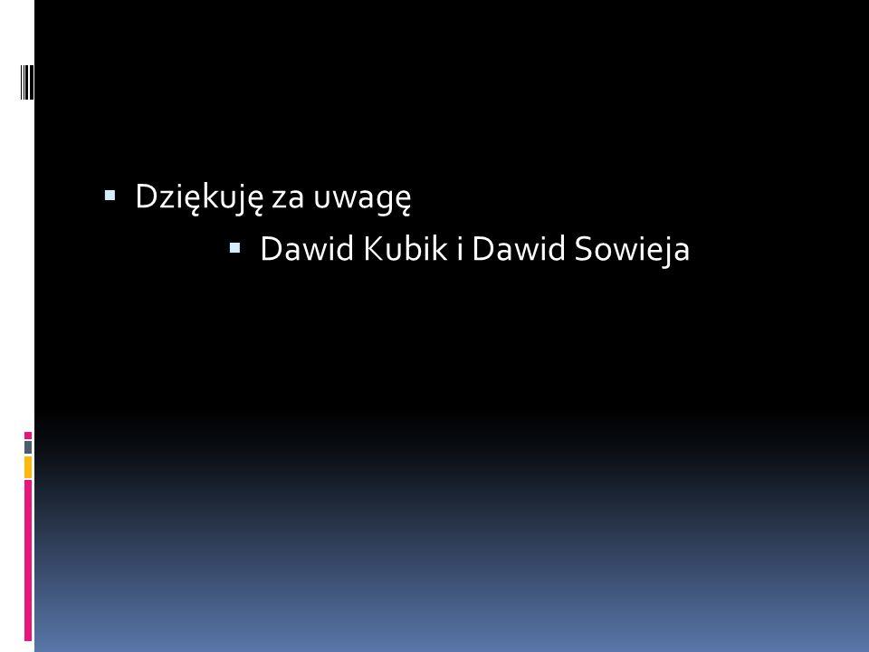 Dawid Kubik i Dawid Sowieja