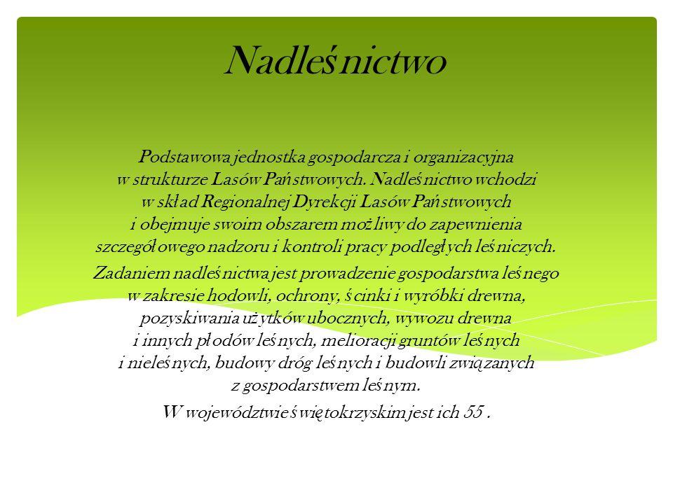 W województwie świętokrzyskim jest ich 55 .
