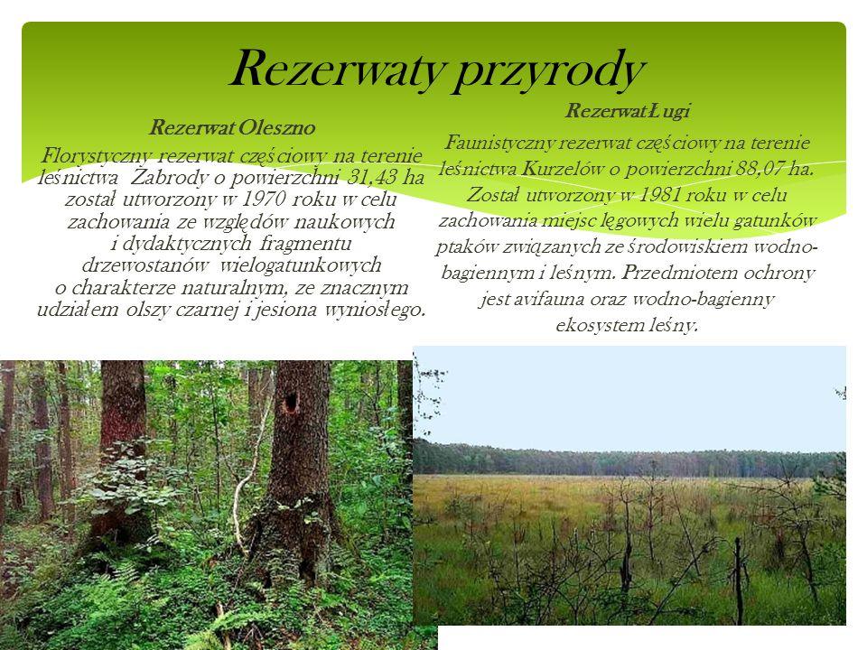 Rezerwaty przyrody Rezerwat Oleszno