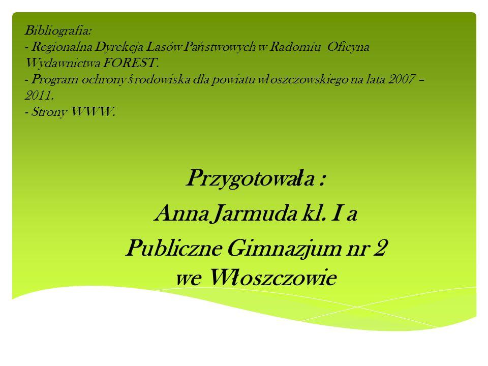 Publiczne Gimnazjum nr 2 we Włoszczowie